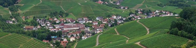 Blick von Schloss Staufenberg auf den Weinbauort Durbach in der Ortenau