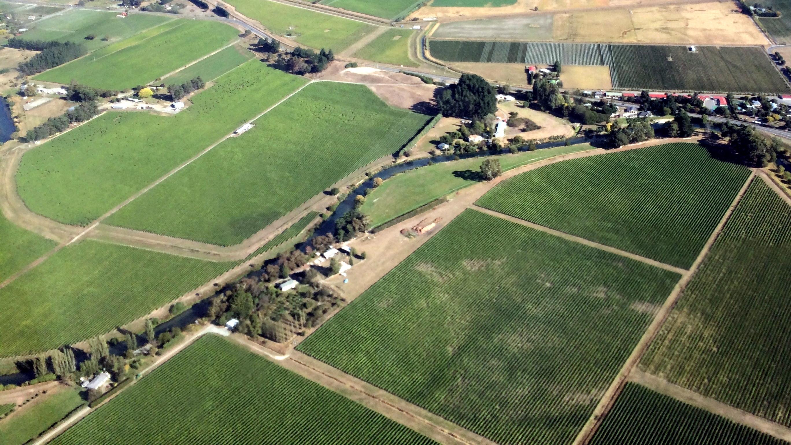 Weinberge in Neuseeland